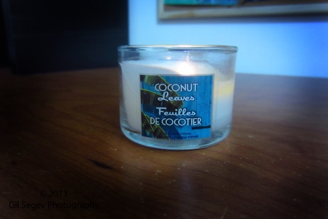 Bath & Body Works Coconut Leaves
