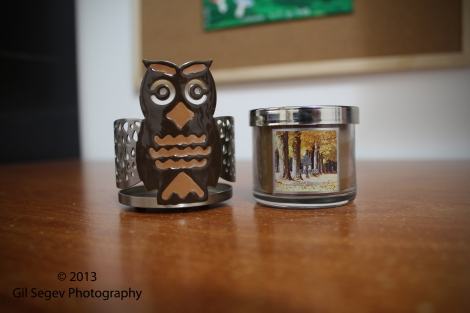 Bath & Body Works Leaves candle and brown owl candle sleeve