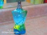 Jean Paul Gaultier Le Male Summer 2012 bottle